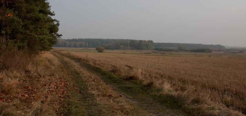 20091017-img_5869