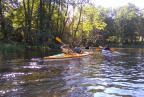 Spływ kajakowy (Krutyń - Rosocha)