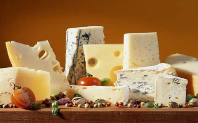 Cheese and Cottage cheese Festival , UWM Olsztyn, Faculty of Food Science,