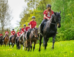 students ride a horse