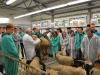 dsc_1355-owce